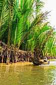 Sailing the tributaries of the Mekong River, Vietnam, Indochina, Southeast Asia, Asia