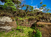 Felsenlabyrinth, Asilo de la Paz, Insel Floreana Hochland (Charles), Galapagos, UNESCO-Welterbestätte, Ecuador, Südamerika