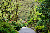 Gravel walkway in Japanese Garden, Portland, Oregon, United States