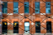 Urban Wire Mesh Fence,New York, New York, United States