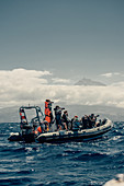 Whale watching off the coast of Picos, Atlantic Ozen, Pico, Pico island, Azores, Portugal, Europe,