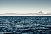 , Whales, Water, Sea, Atlantic Ocean, Atlantic Ozen, Pico, Pico Island, Azores, Portugal, Europe, Dinghy,