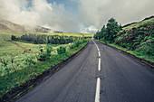 Road, Sao Miguel, Azores, Portugal, Atlantic, Atlantic Ocean, Europe