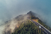 Road in the fog in the Azores, Sao Miguel, Azores, Atlantic Ocean, Portugal, Europe