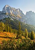 View from Lahngangkogel, Kalbling, Sparafeld, Reichenstein, Ennstal Alps, Styria, Austria