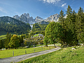 Bischofsmütze, Hofalm, Land Salzburg, Österreich