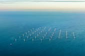 Wind turbines from the air, Baltic Sea, Denmark