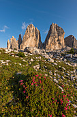 Die drei Zinnen, Dolomiten, Südtirol, Italien