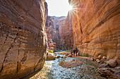 Family trip through Jordan