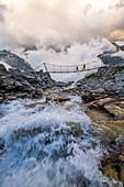 Hängebrücke nahe Olperer-Hütte im hinteren Zillertal, Tirol, Österreich