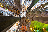 Architectural details from the interior of Antoni Gaudi's Sagrada Familia, Barcelona, Catalonia, Spain, Europe