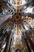 Architektonische Details vom Innenraum von Antoni Gaudi's Sagrada Familia, Barcelona, Katalonien, Spanien, Europa
