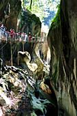 Blick in die Schlucht Pont du diable, Geopark Chablais, La Vernaz, Frankreich, Europa,
