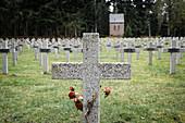 Rote Rosen an einem Grabstein auf dem Soldaten Friedhof am Wettstein, Orbey, Elsass, Frankreich, Europa