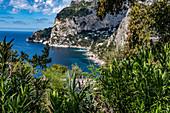 View of the Marina Piccola Bay on Capri, Capri Island, Gulf of Naples, Italy
