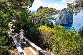 Frau auf dem Weg zu den Faraglioni Felsen auf Capri, Insel Capri, Golf von Neapel, Italien