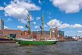 Sailing ship Alexander von Humboldt at the old fish market in the port of Hamburg, northern Germany, Germany