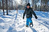 Kleiner Junge stapft mit Schneeschuhen durch einen Winterwald, Finnland