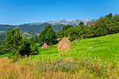 Magura with the Königsstein massif, Craiului National Park, Carpathians, Transylvania, Romania