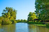 Side arm of the Danube, Sfantu Gheorghe, Danube Delta, Biosphere Reserve, UNESCO World Heritage Site, Dobruja, Romania