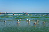 Mamaia Beach, Constanta, Dobruja, Black Sea Coast, Romania