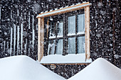 Hut facade with window during snowfall, Tegelberghaus, Tegelberg, Ammergau Alps, Swabia, Bavaria, Germany