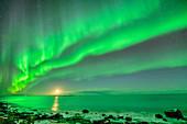 Polarlicht über Meeresbucht mit Mond, Polarlicht, Nordlicht, Lofoten, Nordland, Norwegen