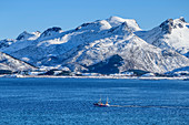 Ship sails through snowy mountains through fjord, Lofoten, Nordland, Norway