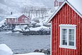 Norwegian red fisherman's houses in snowstorm, Nusfjord, Lofoten, Nordland, Norway
