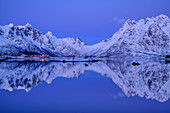 Illuminated slidpollnes and snowy mountains are reflected in fjord, Lofoten, Nordland, Norway