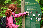 Woman hiking stands in front of information board about bees, bee trail Eitdorf, Eitdorf, natural area Sieg, Bergisches Hochland, North Rhine-Westphalia, Germany