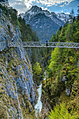 Person while hiking stands on suspension bridge over the Leutasch, Leutaschklamm, Geisterklamm, Wetterstein Mountains, Tyrol, Austria