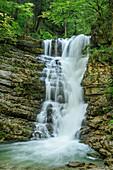 Wasserfall am Jenbach, Bayerische Alpen, Oberbayern, Bayern, Deutschland