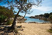Küstenlandschaft und Sandstrand, bei Sartène, Département Corse-du-Sud, Korsika, Frankreich