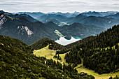Bergpanorama, Ausblick vom Herzogstand, Alpen, Oberbayern, Bayern, Deutschland