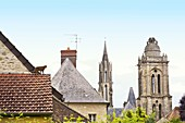 France, Oise, Senlis, Senlis Cathedral, cat on a roof