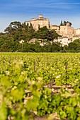 France, Vaucluse, Parc Naturel Regional du Luberon (Natural Regional Park of Luberon), Ansouis, labelled Les Plus Beaux Villages de France (The Most Beautiful Villages of France), certified the Most beautiful Villages of France