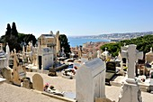 France, Alpes-Maritimes, Nice, the Castle cemetery at the castle hill