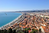 France, Alpes-Maritimes, Nice, the Promenade des Anglais and old town from the castle hill