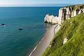 France, Seine Maritime, Pays de Caux, Alabaster Coast, Etretat, Amont cliff