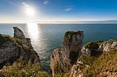 France, Seine Maritime, Pays de Caux, Alabaster Coast, Etretat, Aval cliff