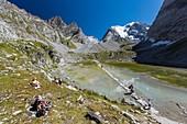 Frankreich, Savoyen, Pralognan la Vanoise, Parc National de la Vanoise, GR55, Weg des Col de la Vanoise, Route du Sel et du Beaufort (Salz- und Beaufortstraße), Wanderer auf dem See des Vaches mit Blick auf den Grande Casse (3855 m)