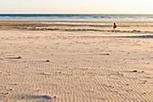 France, Manche, Cotentin, Cap de la Hague, Biville beach