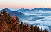 Bayerische Voralpen ragen im Morgenrot aus dem Wolkenmeer, Kufstein, Tirol, Österreich
