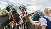 Donkey family is welcomed by their owners at the Scheidplatz in Viehscheid Oberstdorf