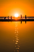 Silhouette of beach walkers on the Gulf of Mexico at sunset, Fort Myers Beach, Florida, USA