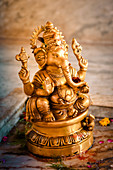 2019, Ter Kadamba, Govardhan, Vrindavan, Uttar Pradesh, India, Shiva Temple Asheshvara Mahadeva, Ganesha (Shiva's son)