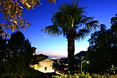 Evening in San Vigilio with palm tree over the upper town, Bergamo, Lombardy, Italy