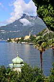 Palm trees and pavilion at Varenna on the east side, Lake Como, Lombardy, Italy