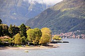 near Bellano on the east bank, Lake Como, Lombardy, Italy